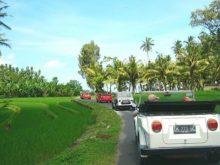 Aktivitas Seru di Bali